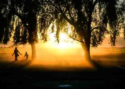 Woman and Child Walking Through Mist At Sunset Between Trees